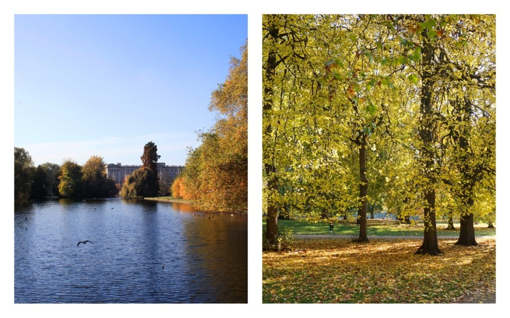 autumn-in-London