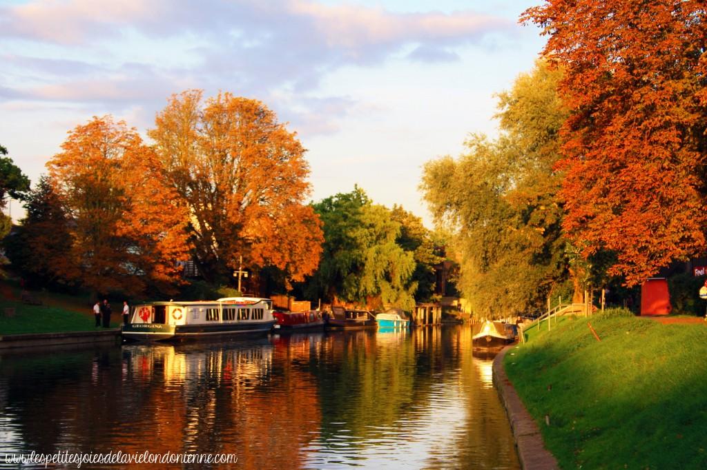 visiter Cambridge en une journée - Automne