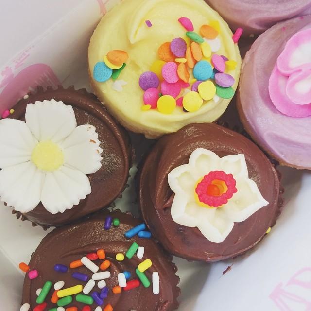 Cupcakes primrose bakery
