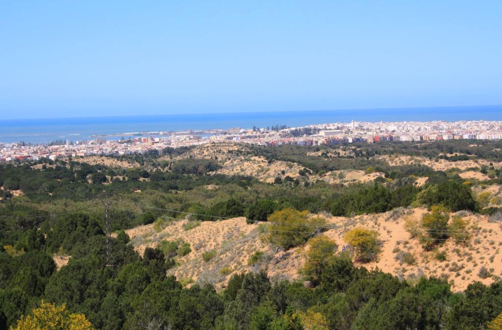 Essaouira vue