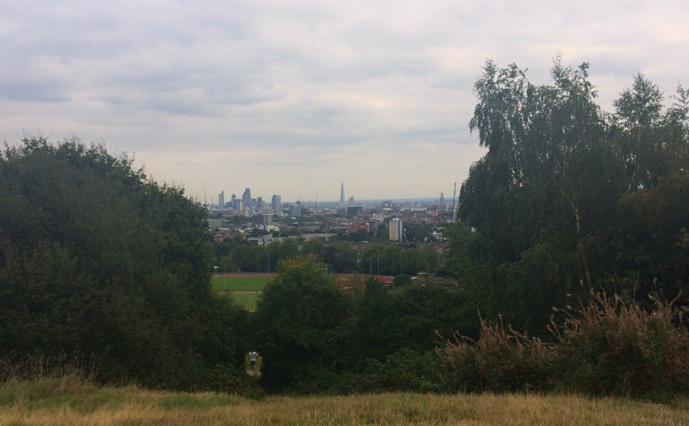 Hampstead Heath 9