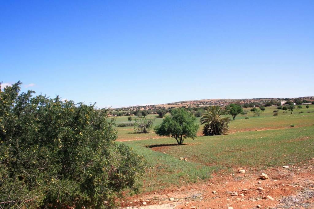 Route vers Essaouira
