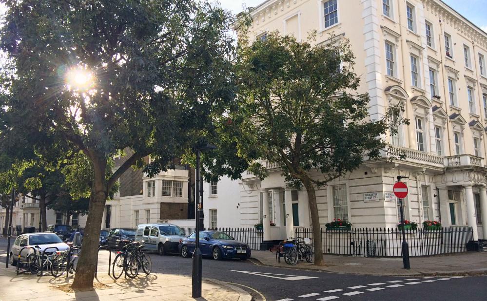 Pimlico rayon de soleil