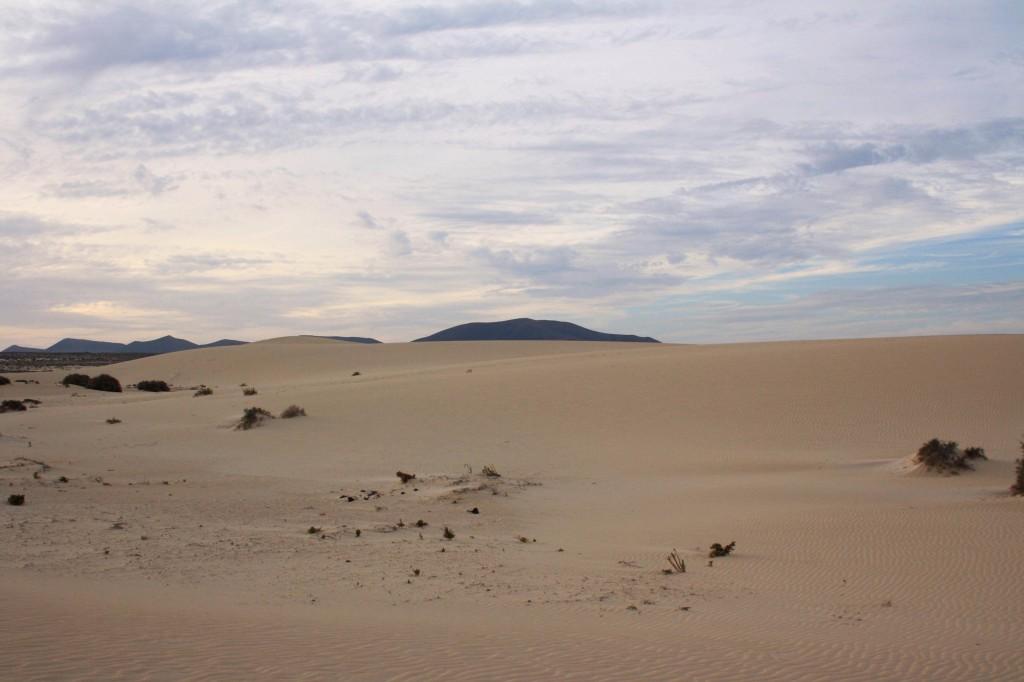Dunes Correlajo