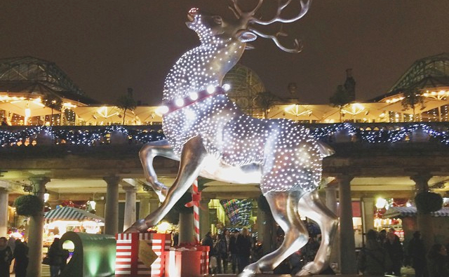 Rudolph by night_Fotor