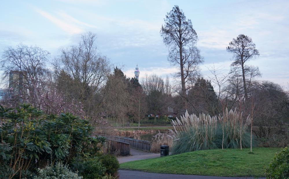 Regent's Park 5