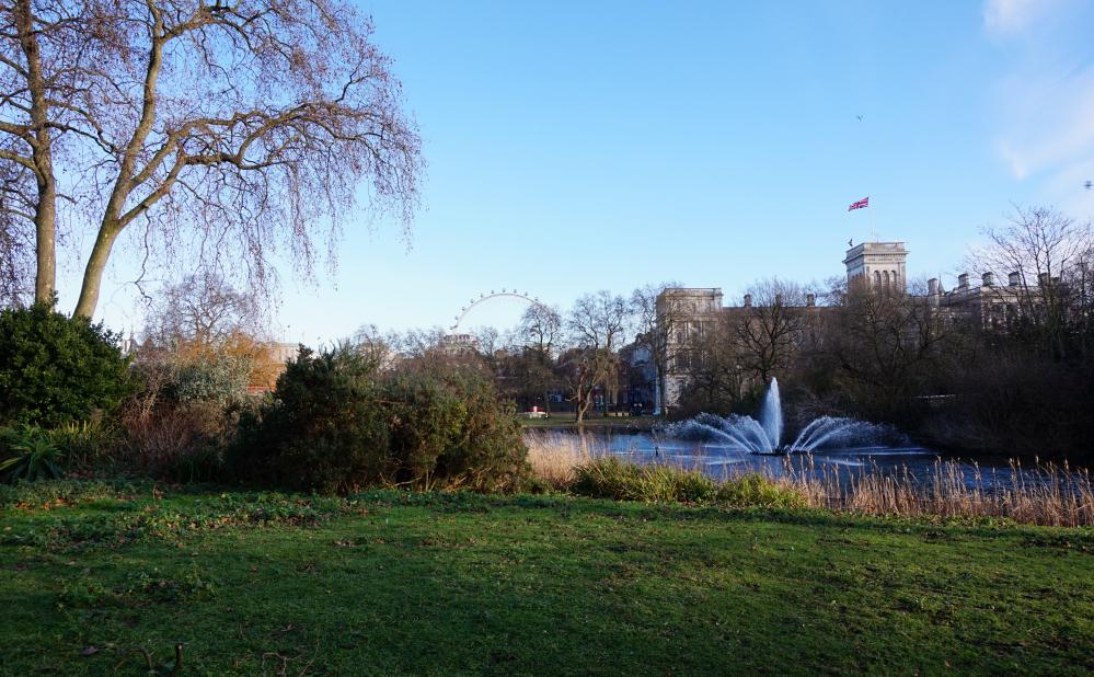 St James Park 4