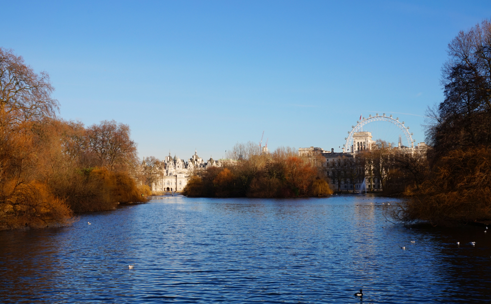 St James Park lac london eye