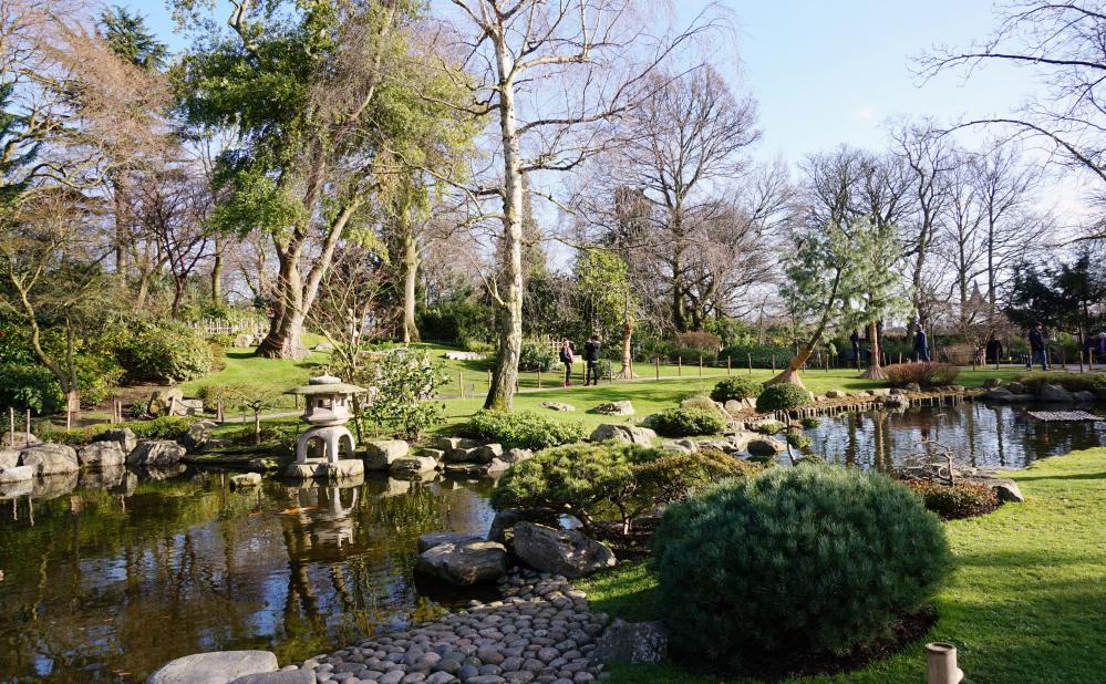 Jardin jap 2