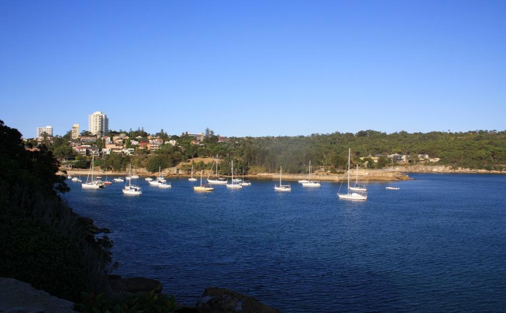 2 semaines à Sydney_Manly 4
