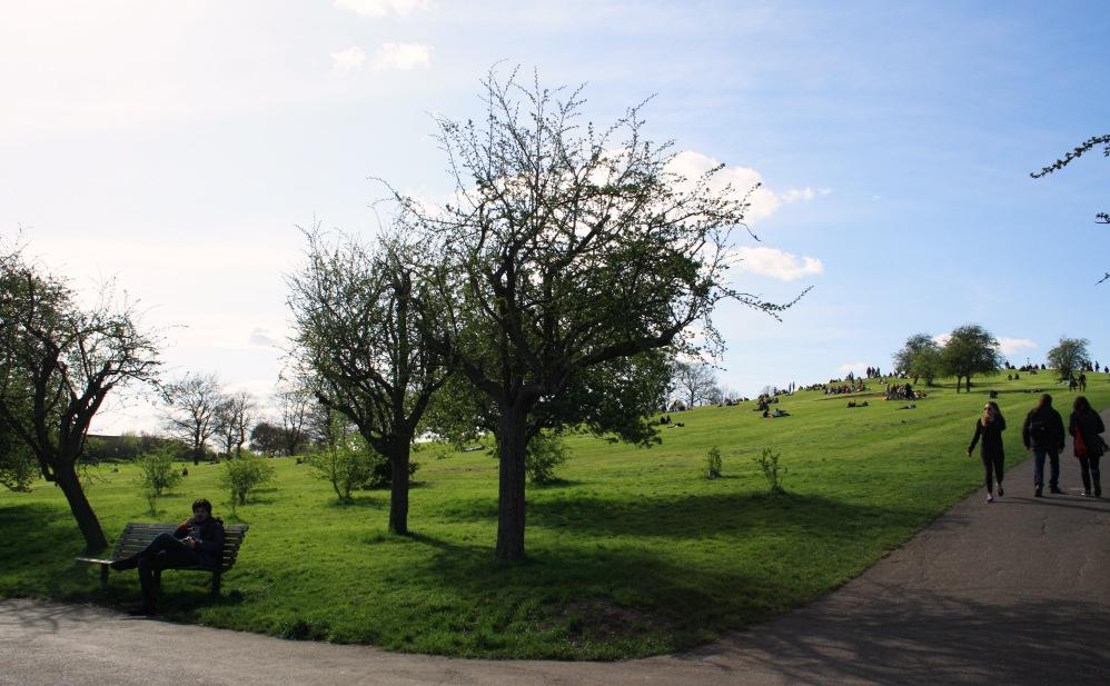 Primrose Hill 17