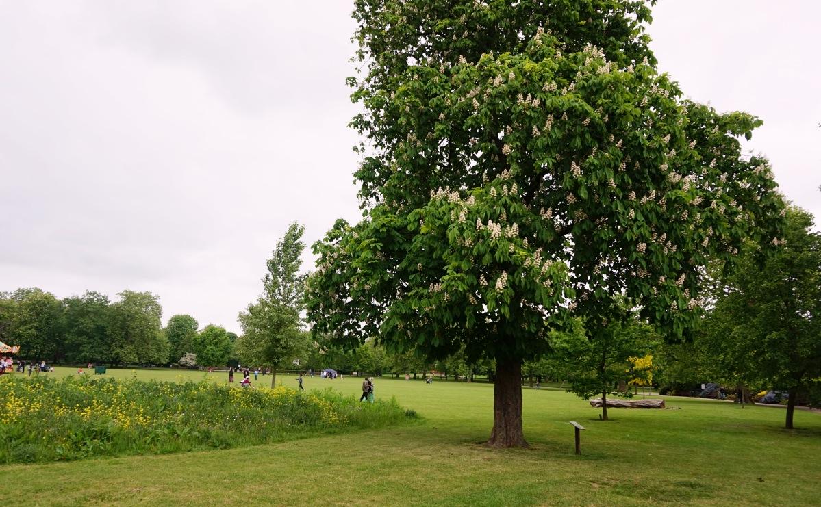 Balade Londres Kensal Rise Queen's Park 15