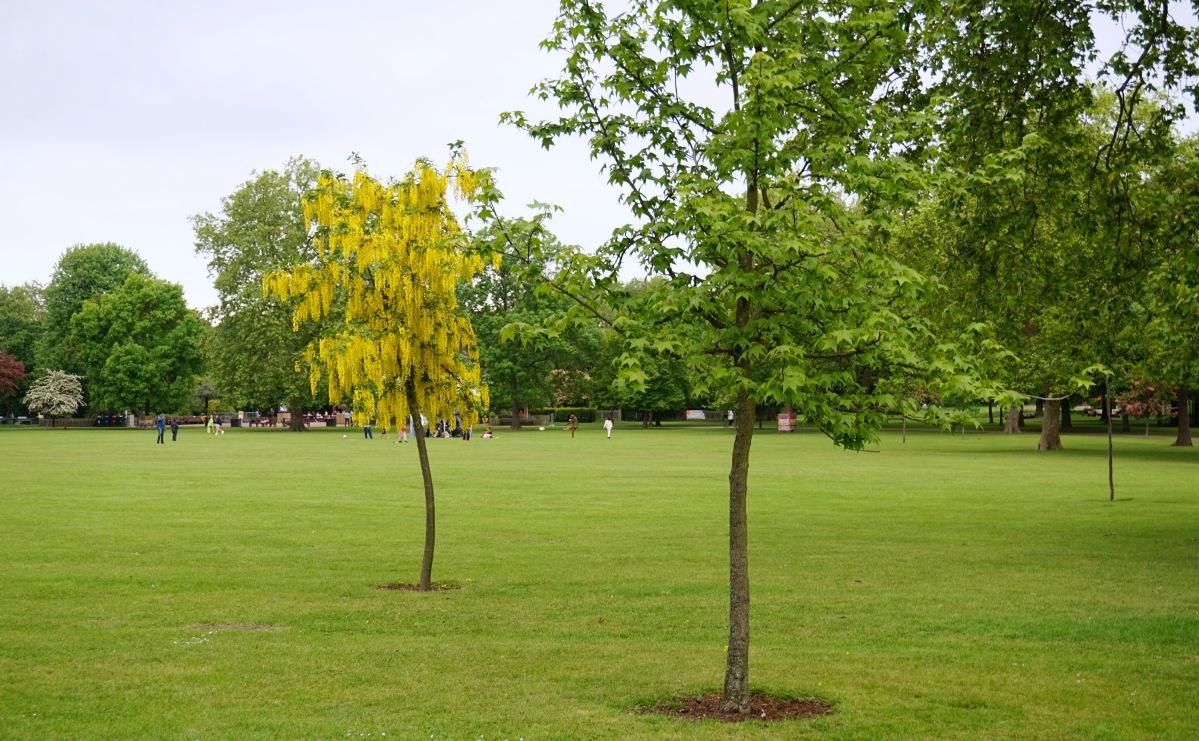 Balade Londres Kensal Rise Queen's Park 16