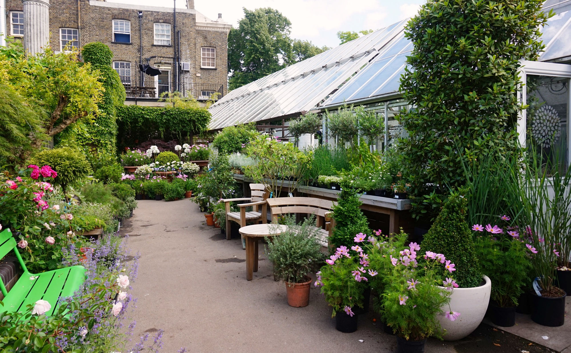 Clifton Nurseries_22