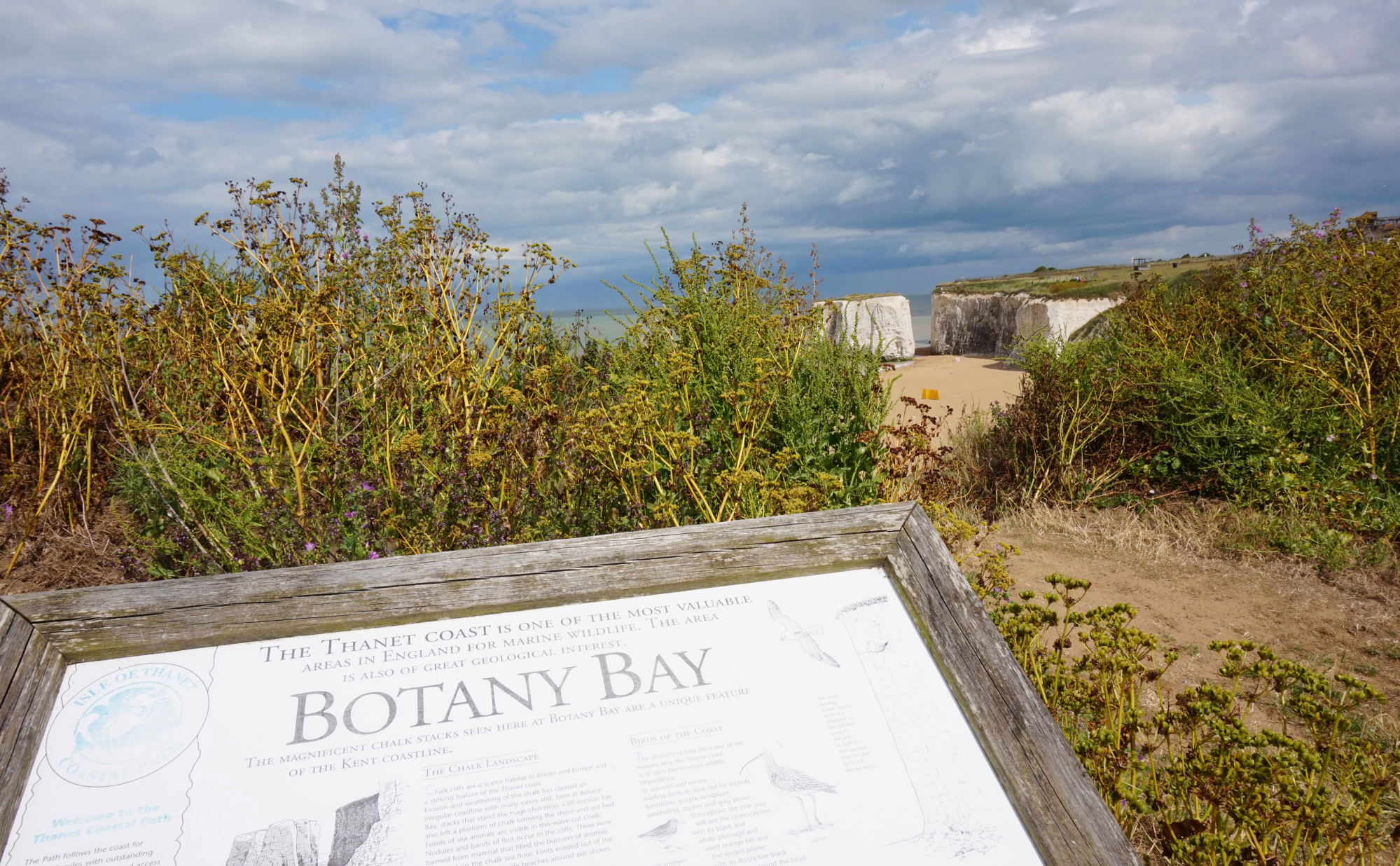 Margate Botany Bay 34