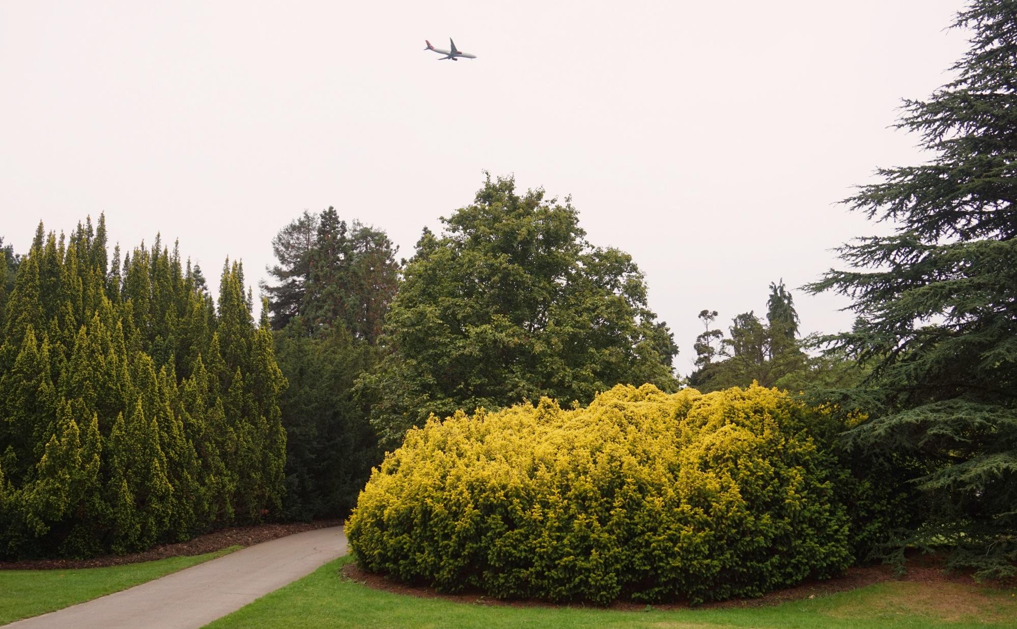 Visiter-Kew-Gardens-10