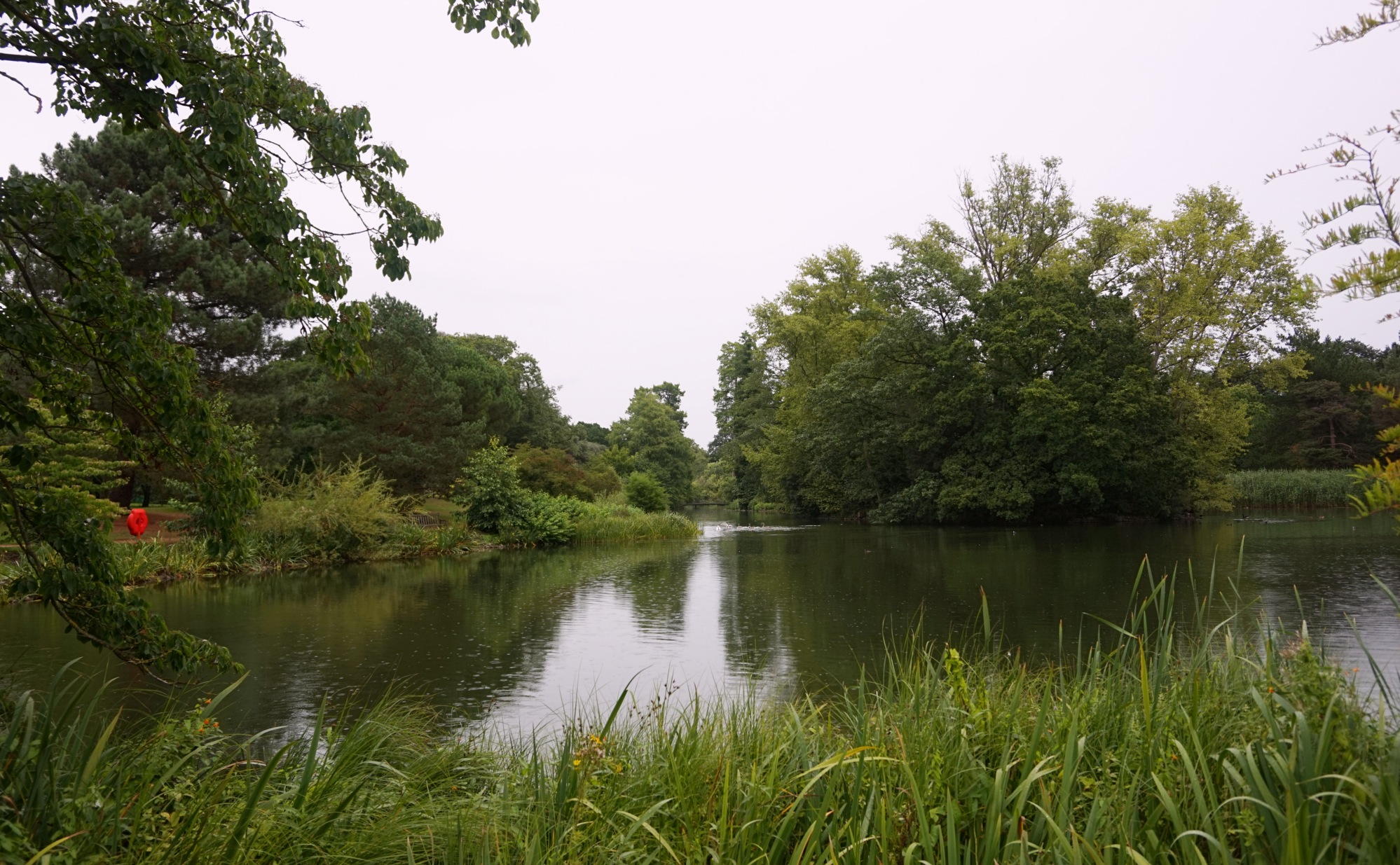 Visiter-Kew-Gardens-14