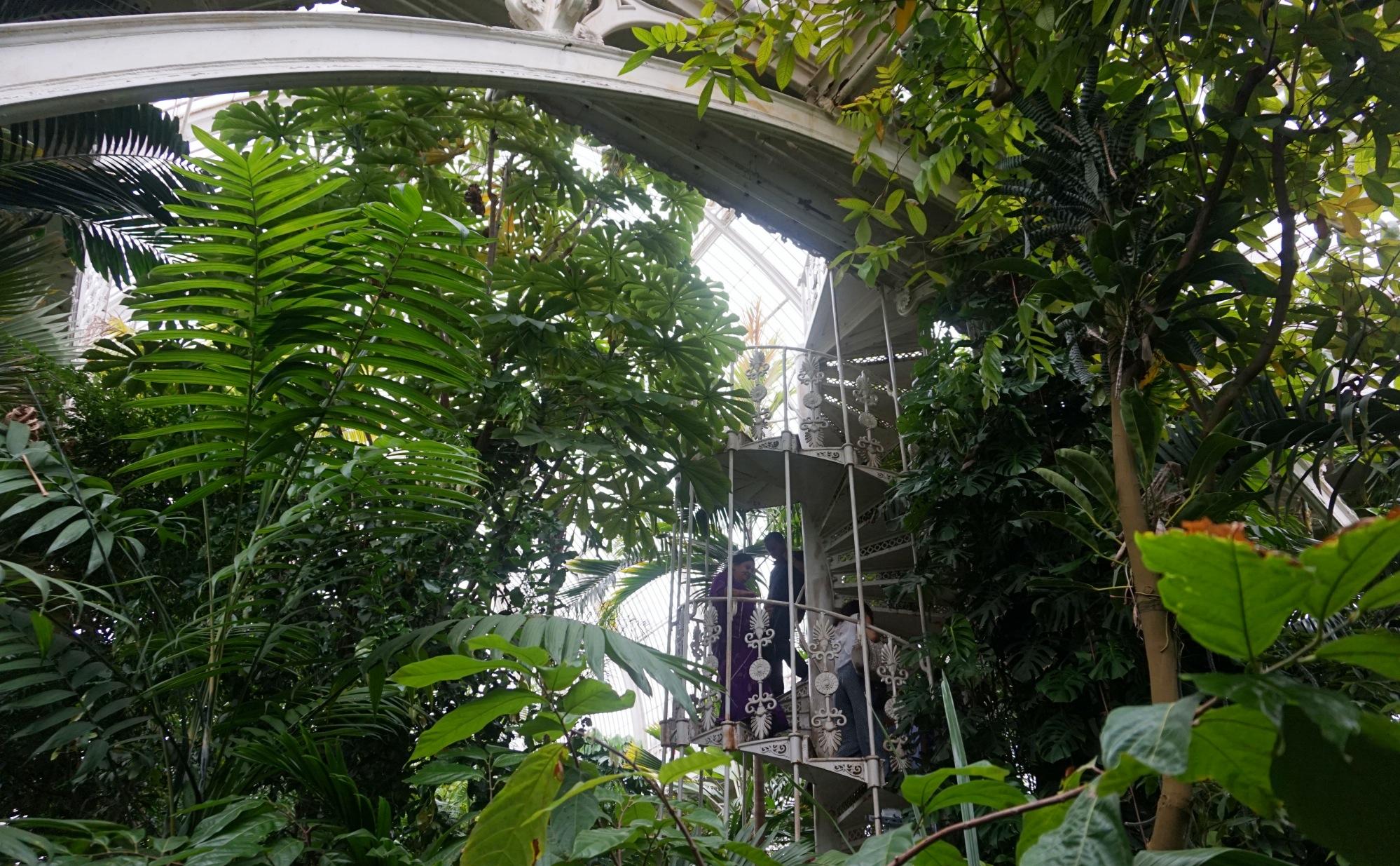 Visiter-Kew-Gardens-21