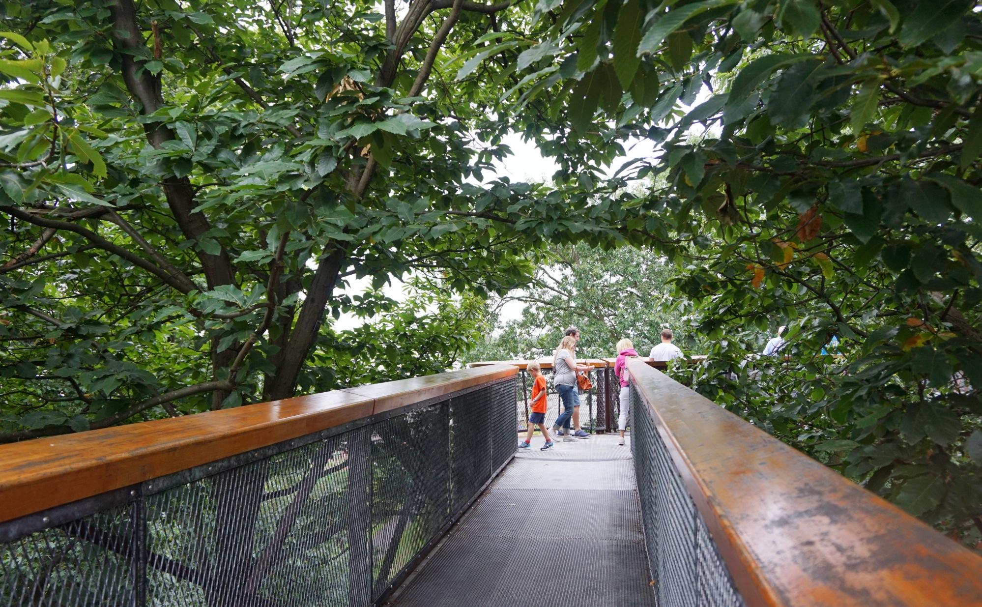 Visiter-Kew-Gardens-7
