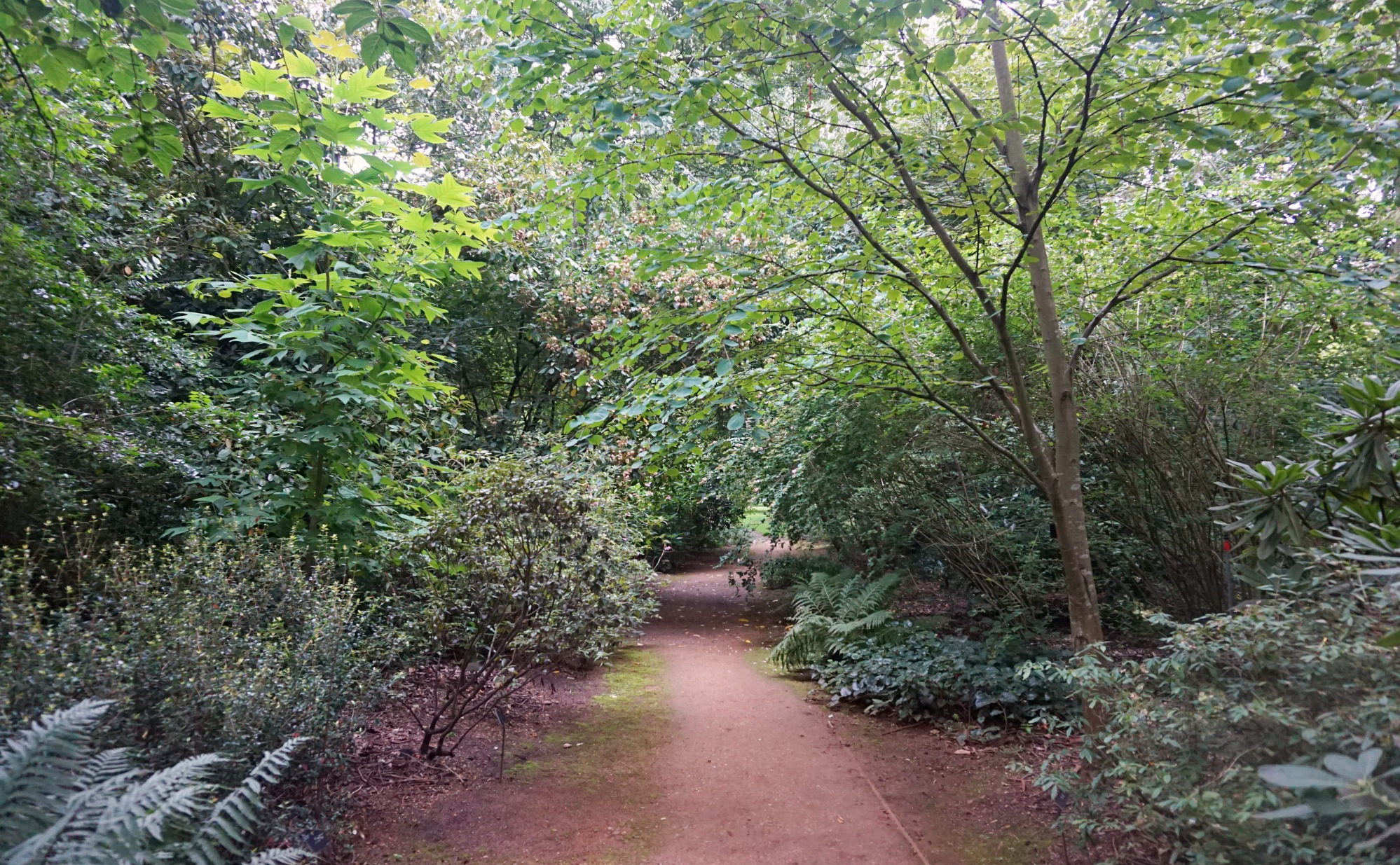 Visiter-Kew-Gardens-9