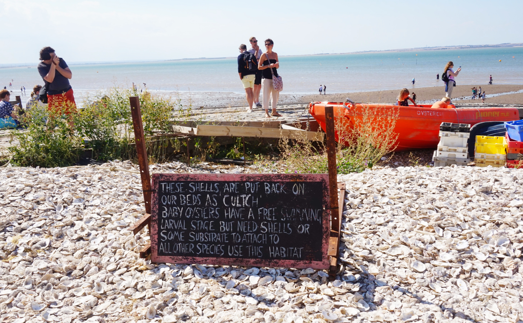 Whitstable-18