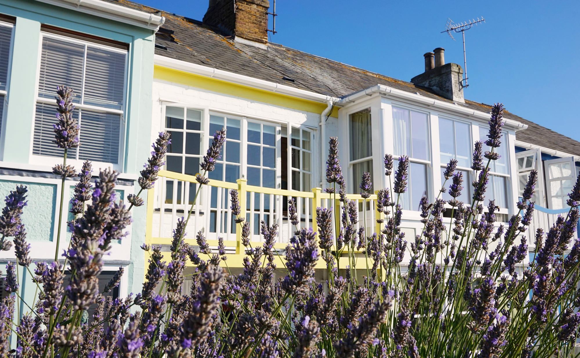 Whitstable-33