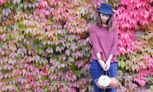 Blogs-préférés-Flaneries Aurélie