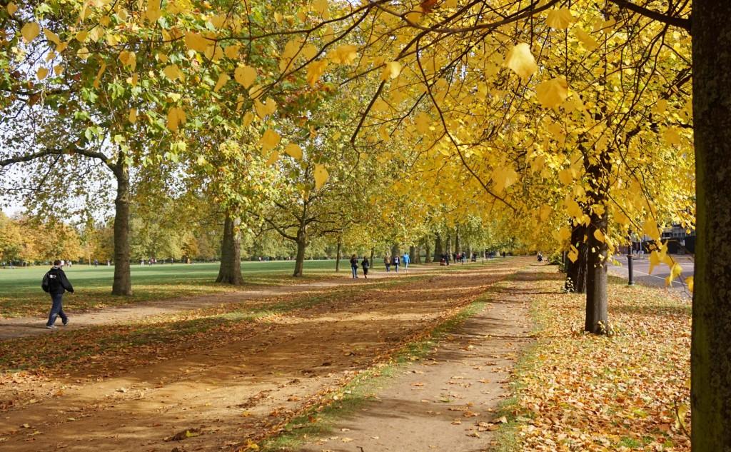 Balade-Automne-Hyde-Park-1
