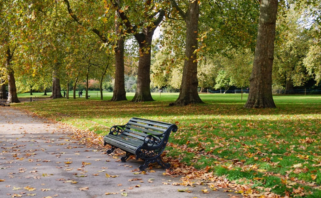 Balade-Automne-Hyde-Park-10