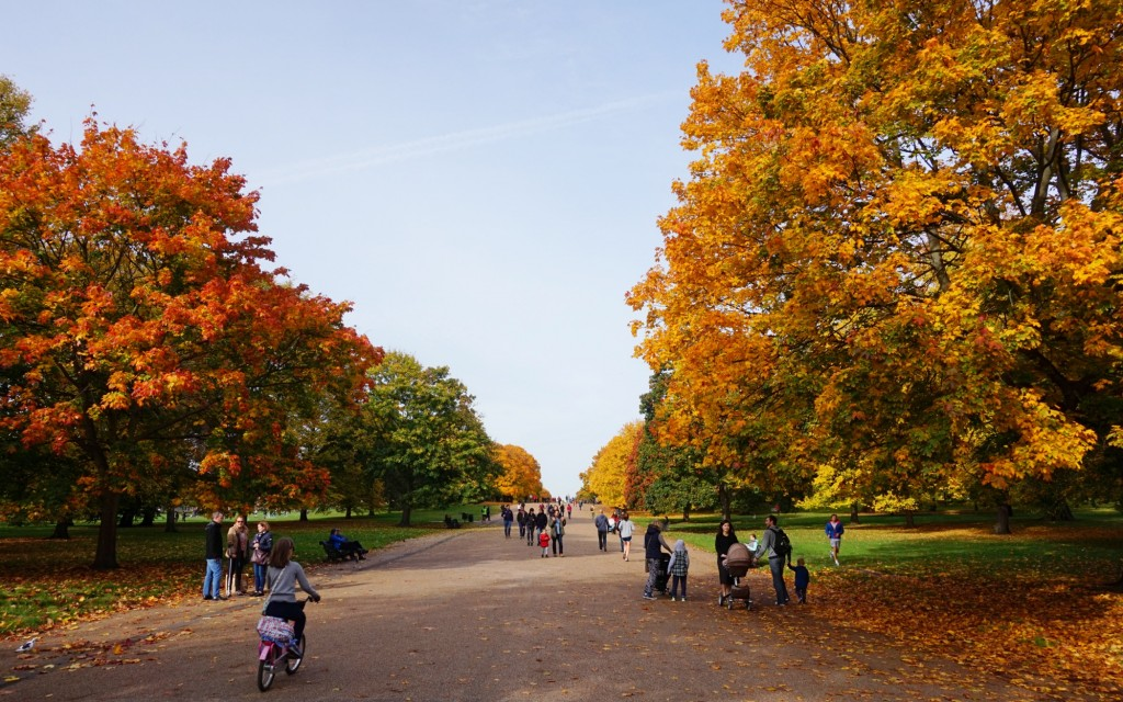 Balade-Automne-Hyde-Park-14