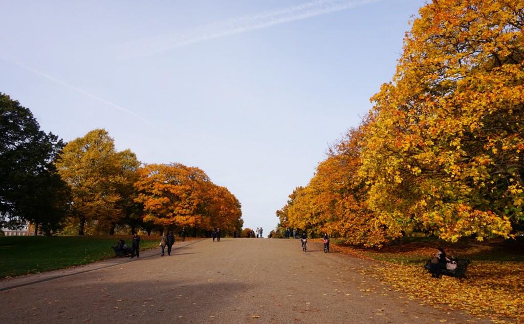 Balade-Automne-Hyde-Park-21