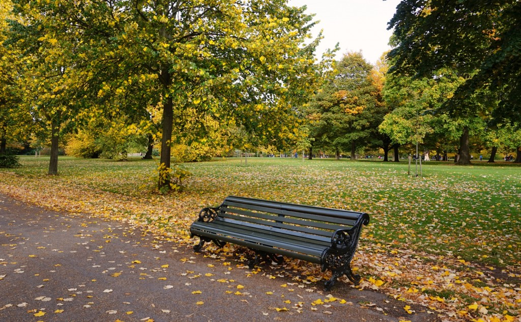 Balade-Automne-Hyde-Park-25