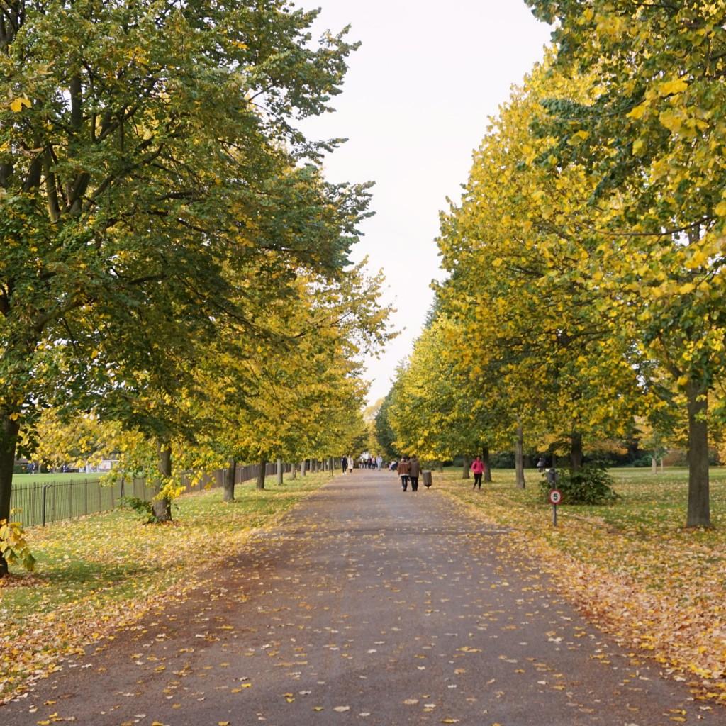 Balade-Automne-Hyde-Park-26