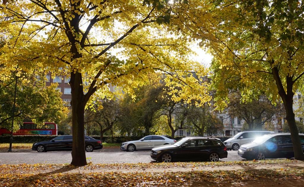 Balade-Automne-Hyde-Park-5
