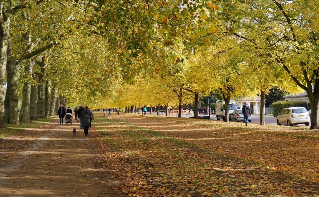 Balade-Automne-Hyde-Park-6