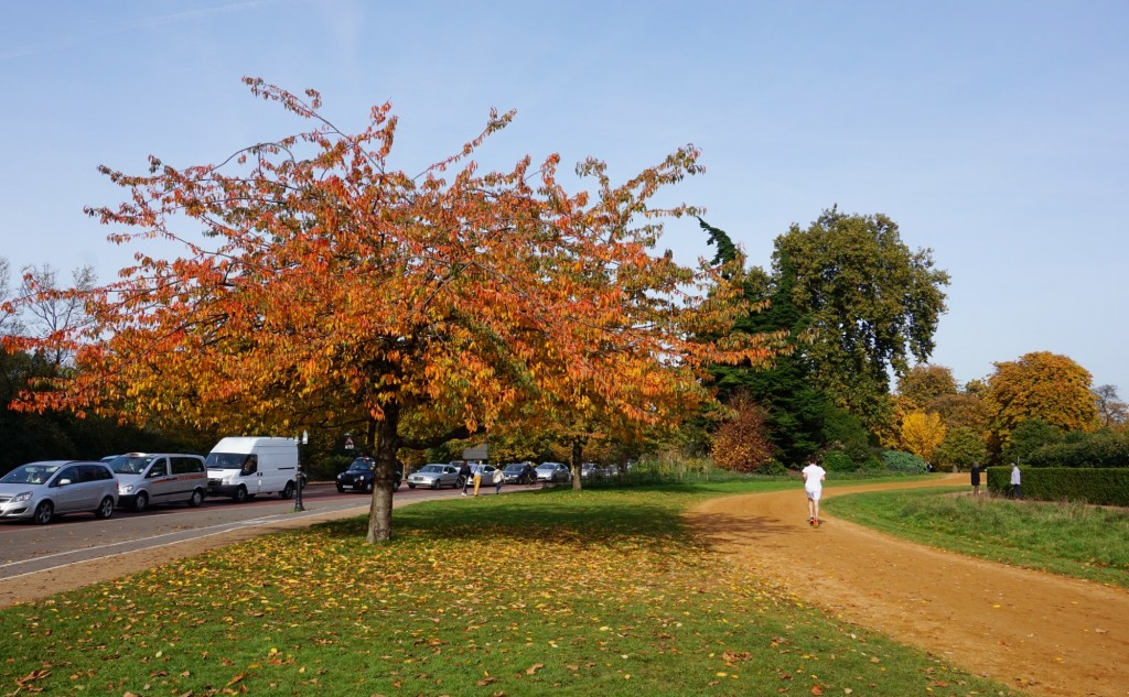 Balade-Automne-Hyde-Park-8