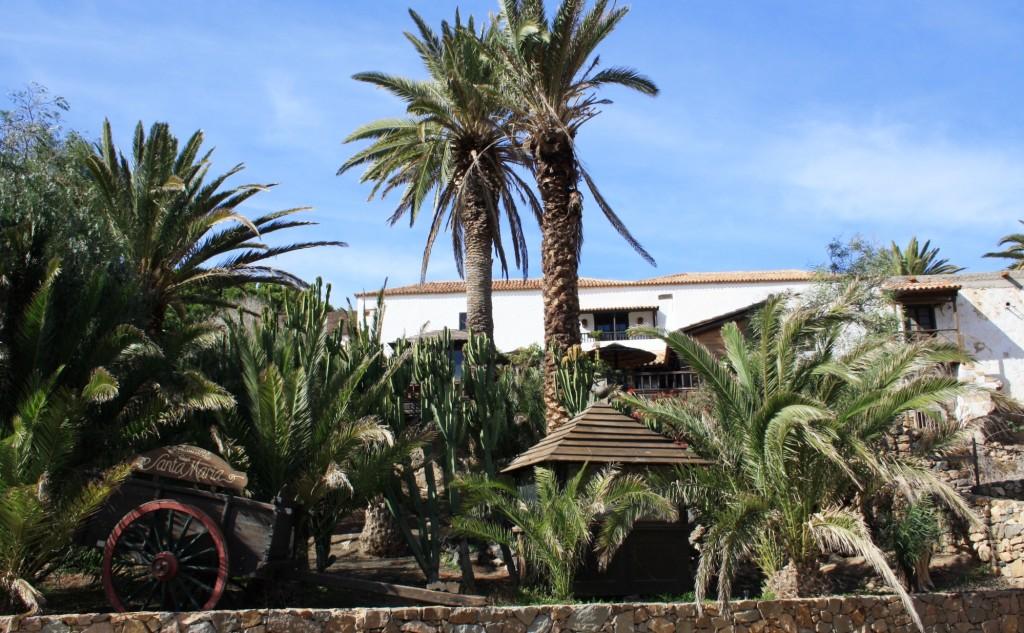 Noel-au-soleil-Fuerteventura-Betancuria