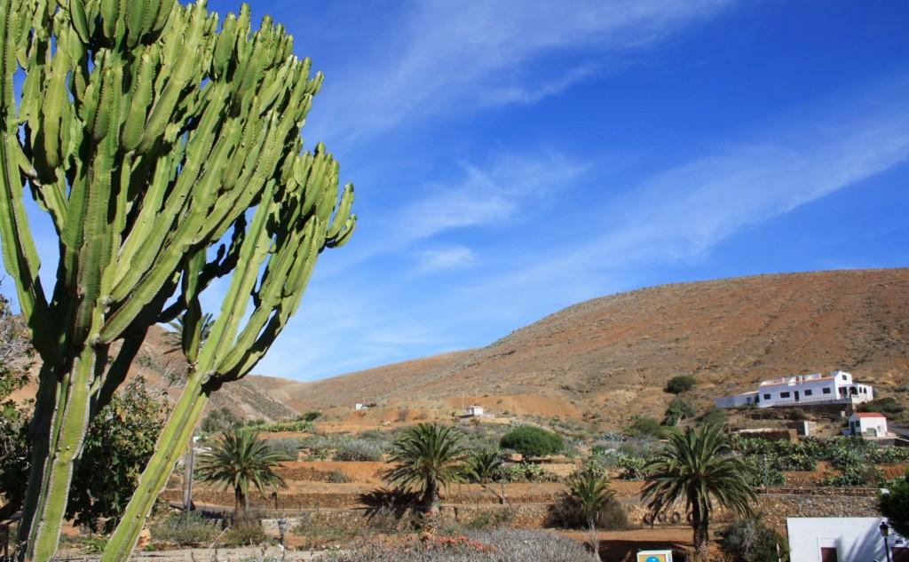 Noel-au-soleil-Fuerteventura-Betancuria 2