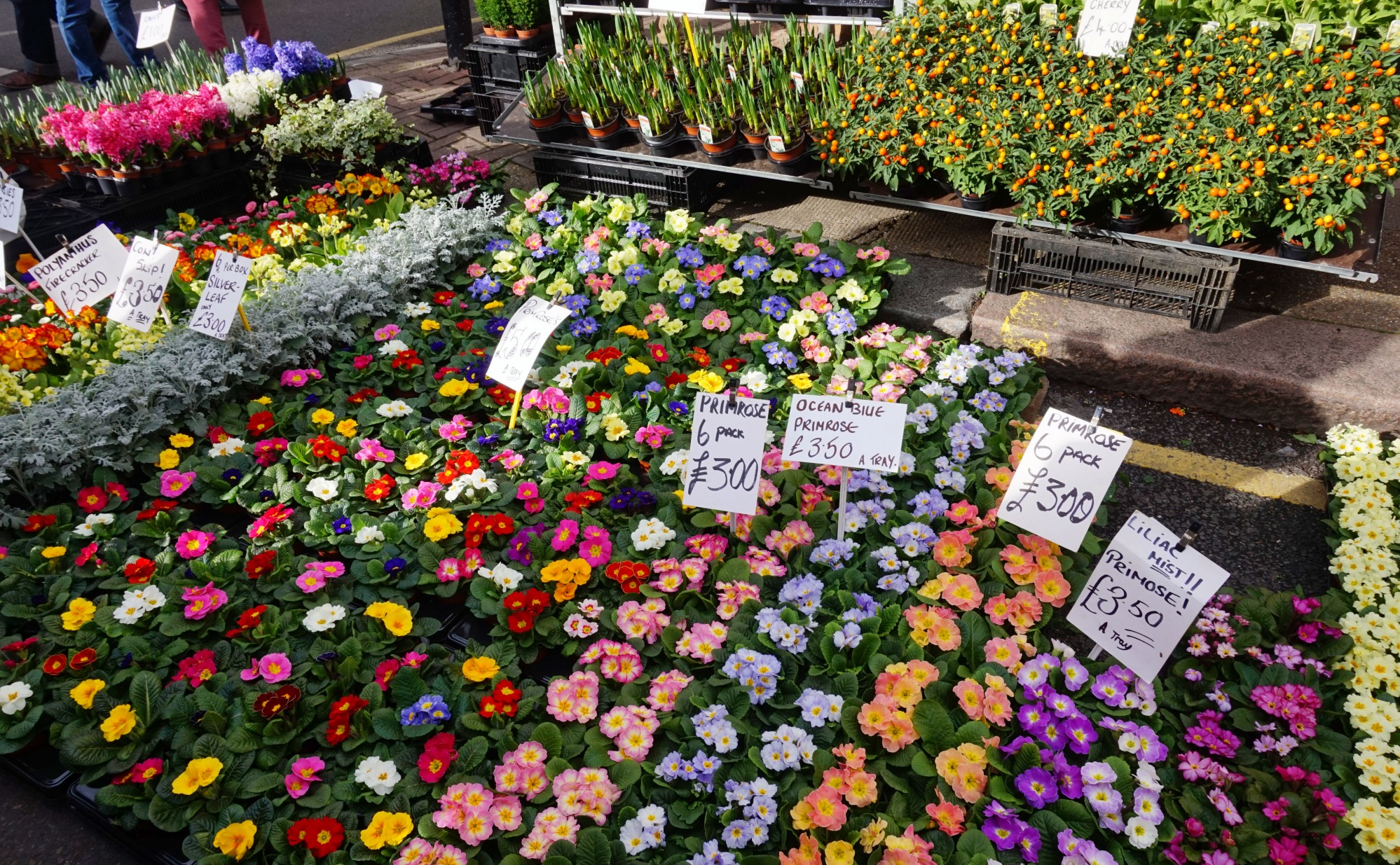 Balade-Columbia-Road-Flower-Market-1