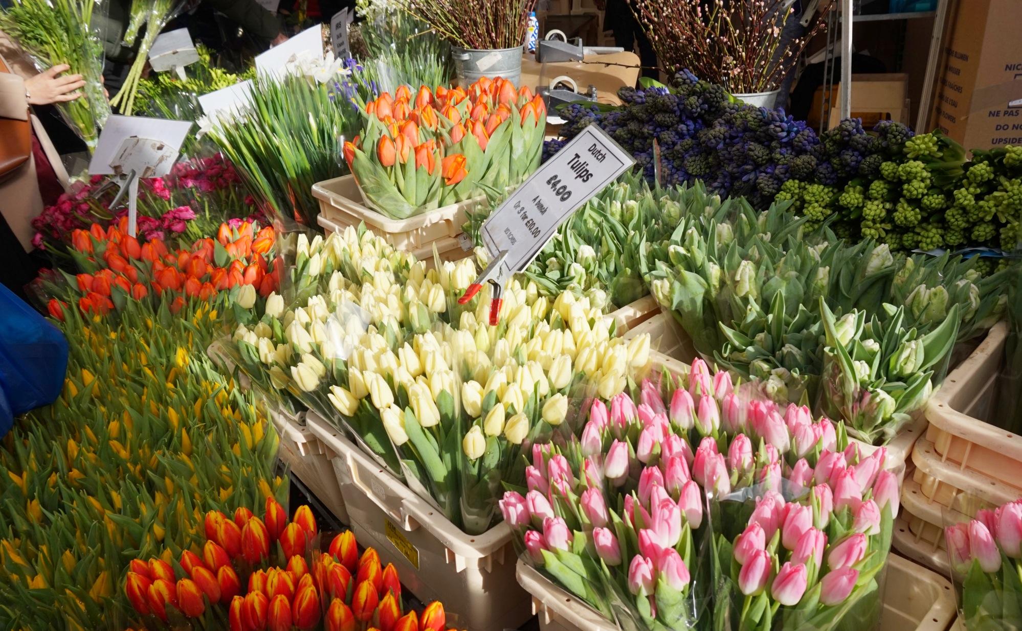 Balade-Columbia-Road-Flower-Market-2