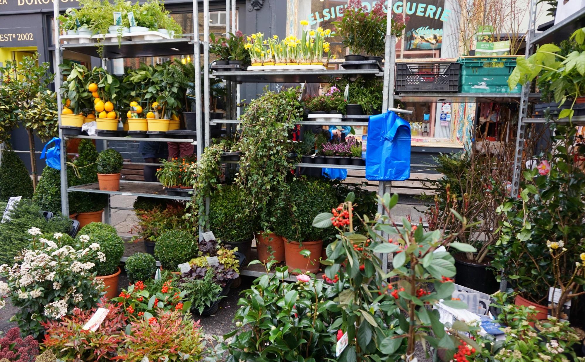 Balade-Columbia-Road-Flower-Market-3
