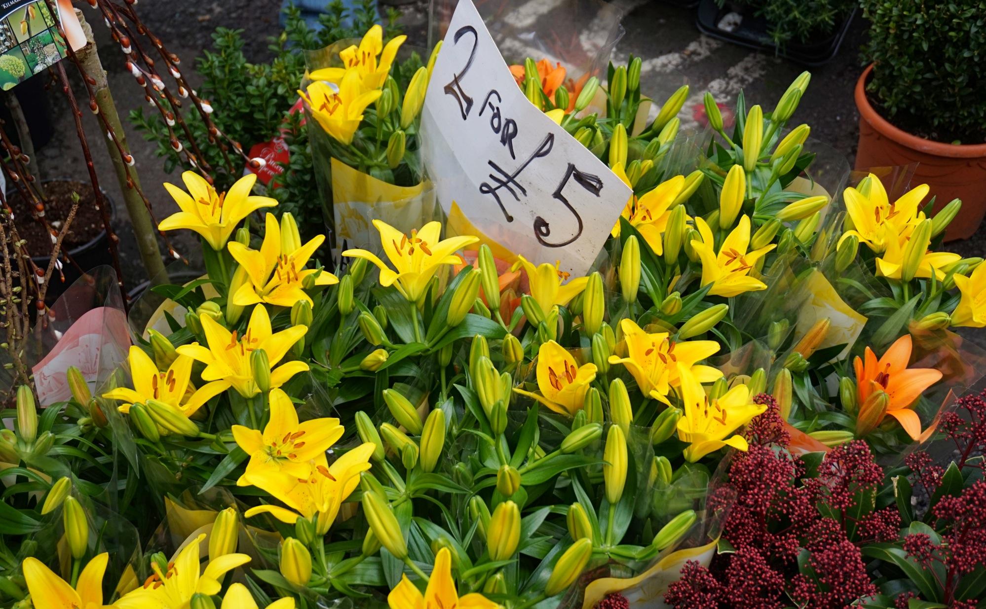 Balade-Columbia-Road-Flower-Market-4
