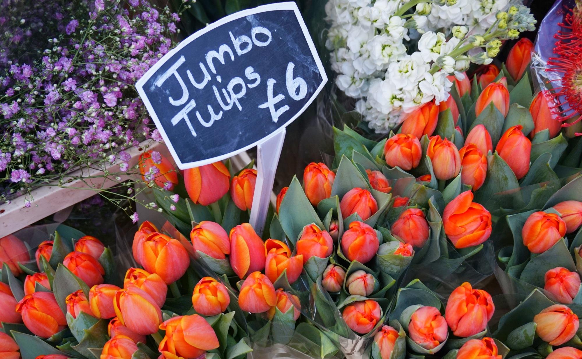 Balade-Columbia-Road-Flower-Market-9
