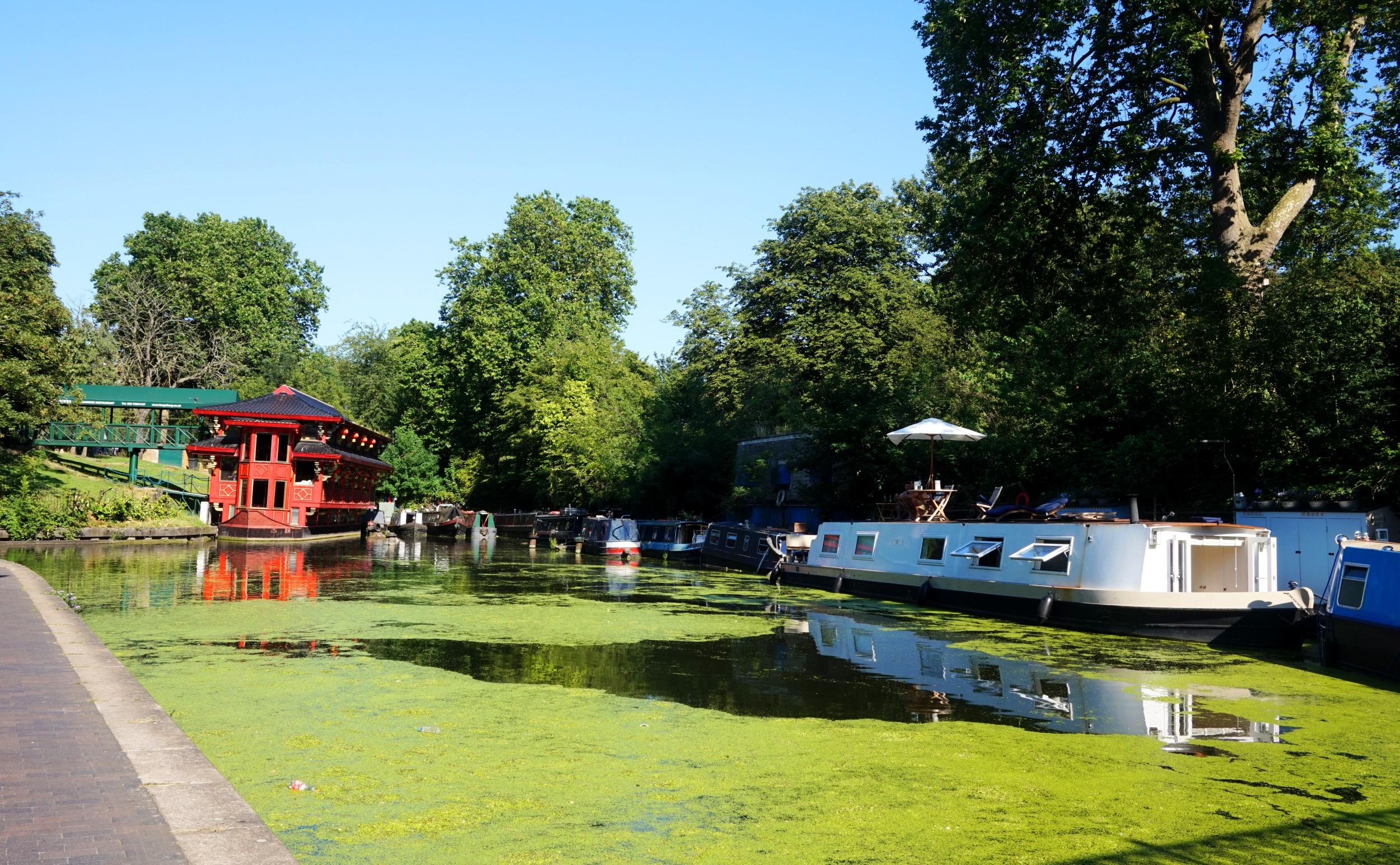 Regents-Canal-48