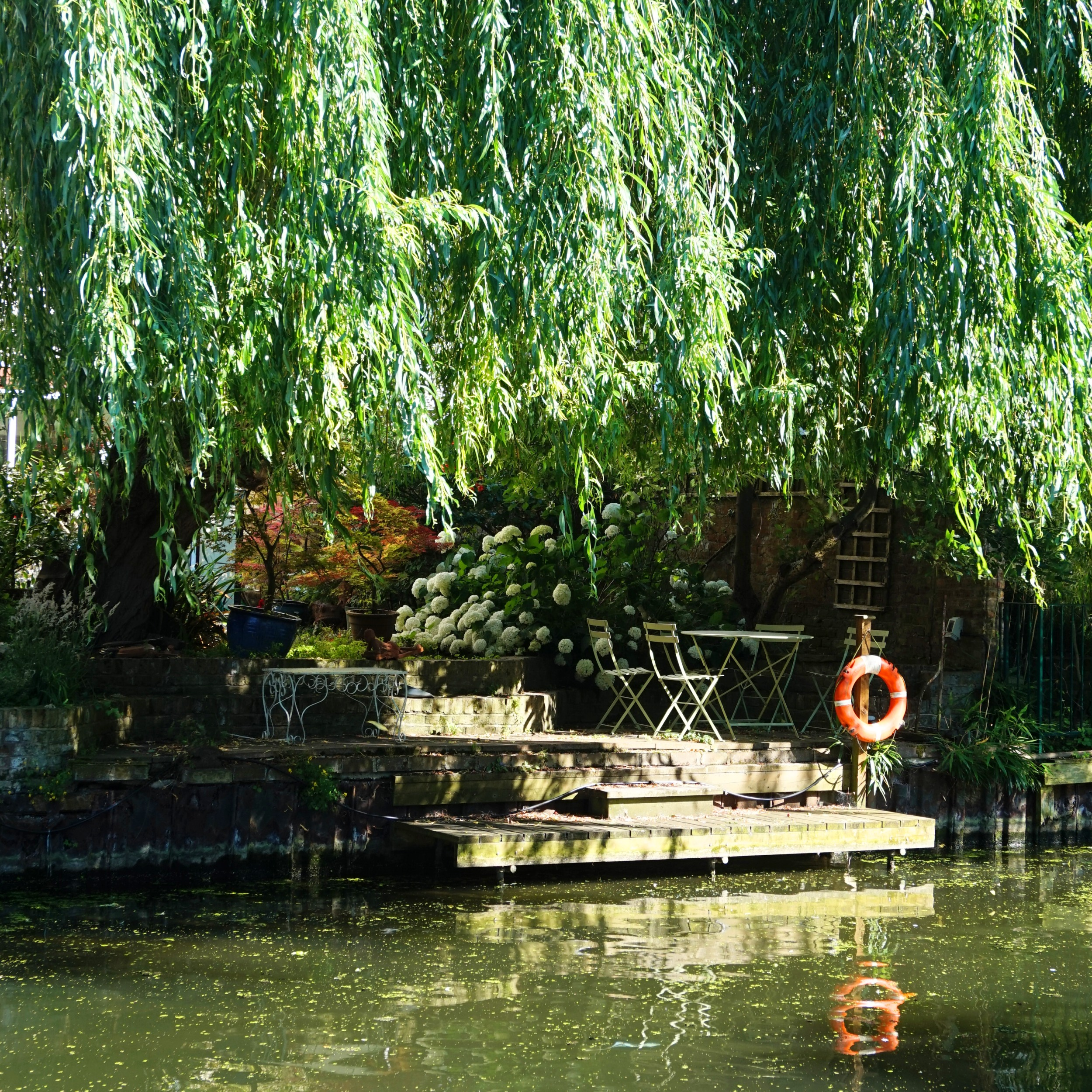 Regents-Canal-51