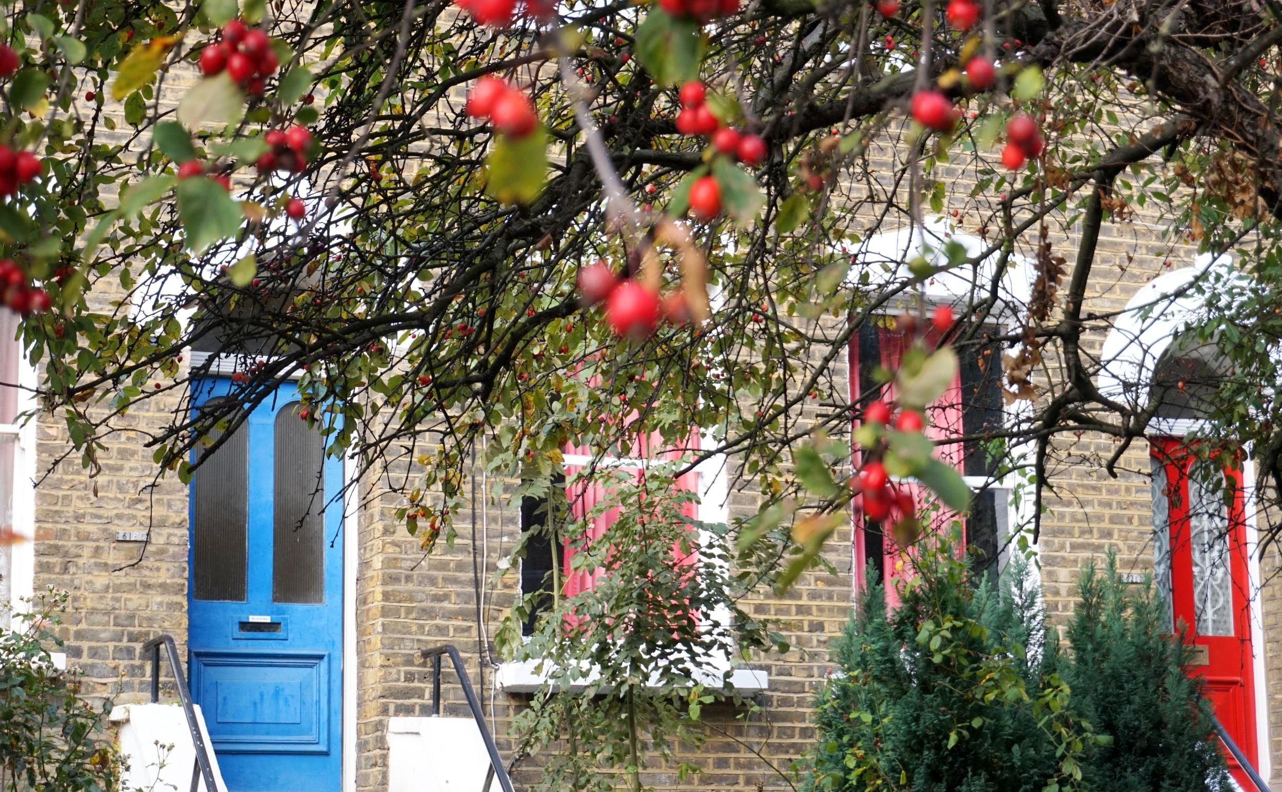 balade-islington-automne-22
