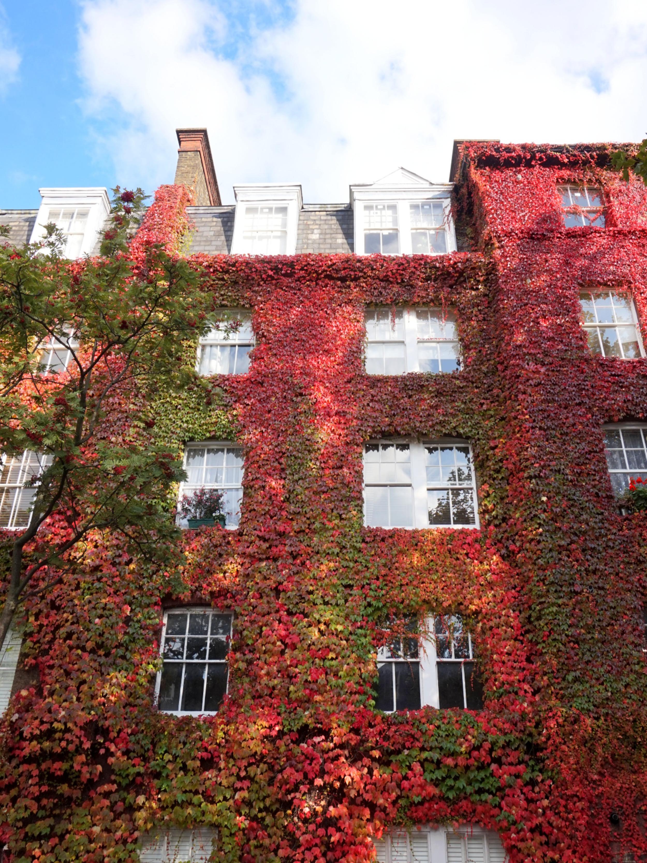 balade-islington-automne-67