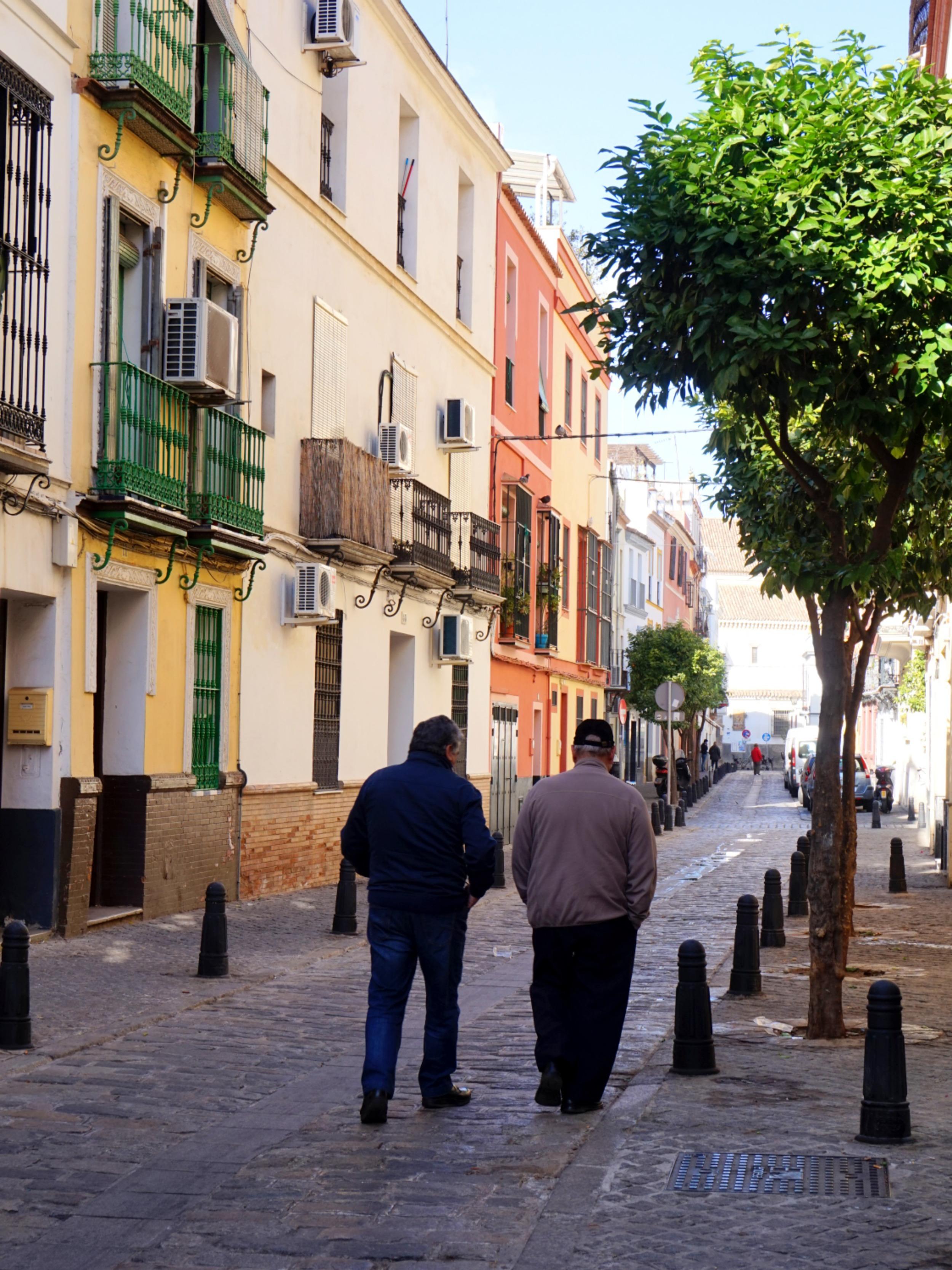 Seville-Janvier-10