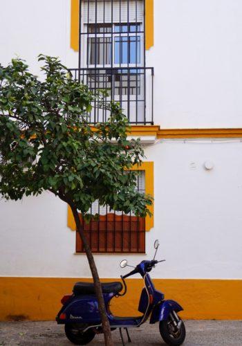 Seville-Janvier-5