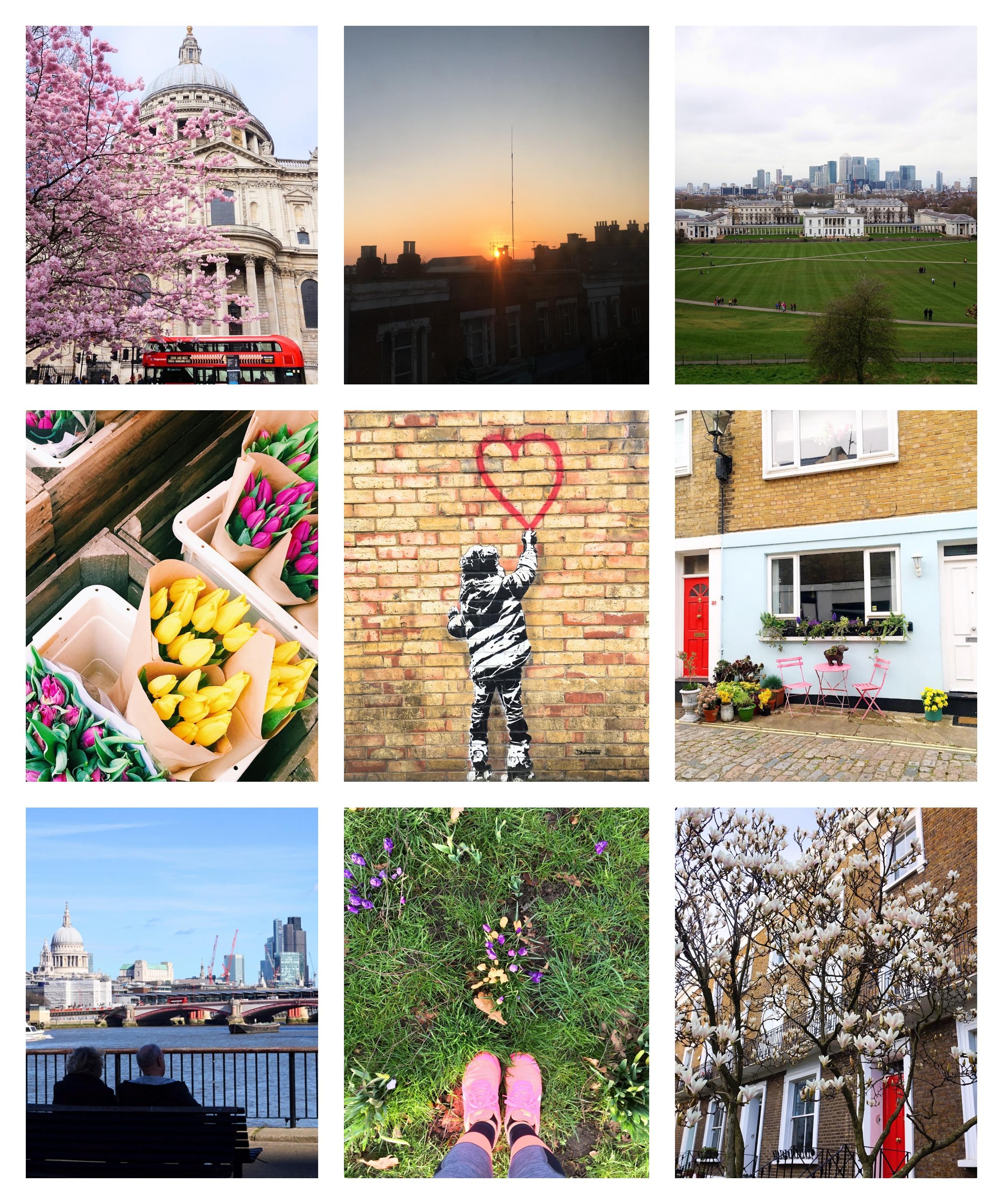 Collage_Mars